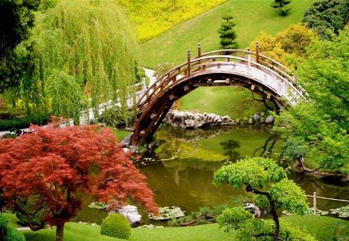 田园日本手绘