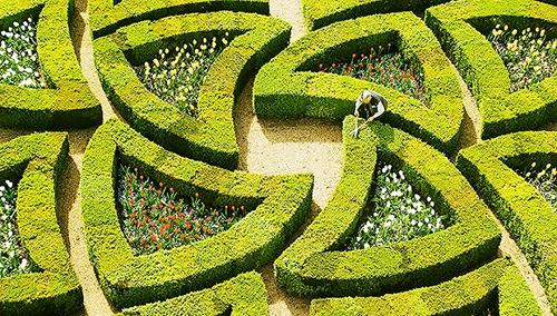 东方园林:海绵城市让城市在生态自然中呼吸|美丽田园